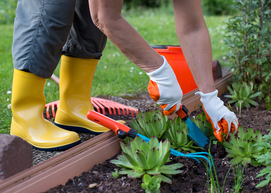 The Top 5 Must-Have Gardening Tools - Greenwood Hardware
