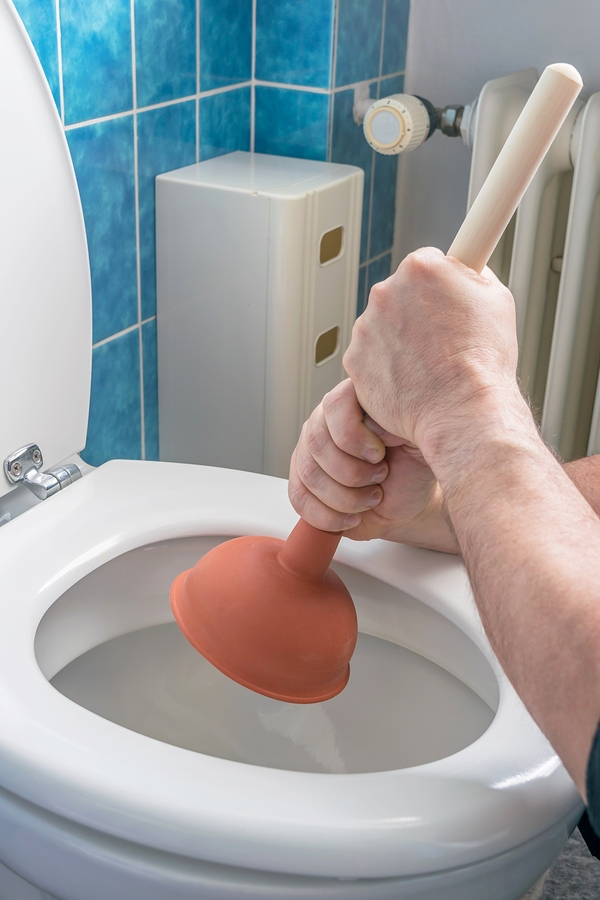 How To Unplug A Clogged Toilet   Greenwood Hardware