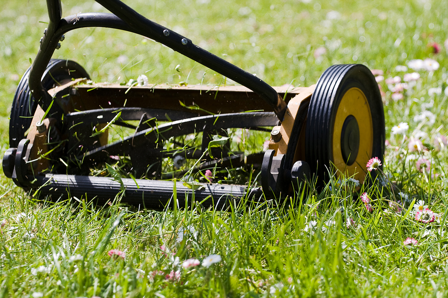 How To Choose a Manual (Push) Mower - Greenwood Hardware