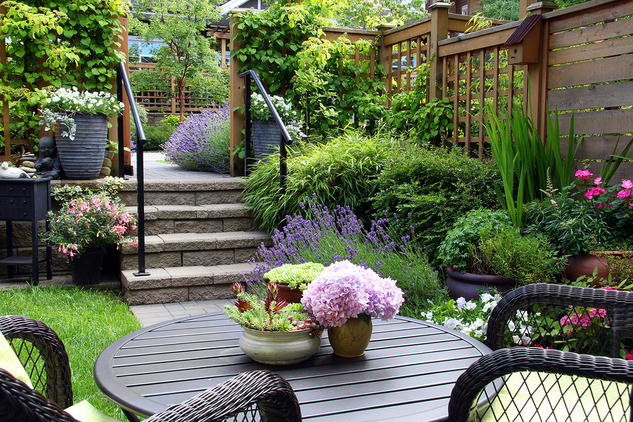 How to Add Privacy to Your Seattle Backyard - Greenwood Hardware