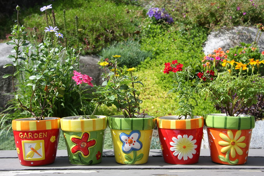 Creative Container Gardens for Your Patio - Greenwood Hardware