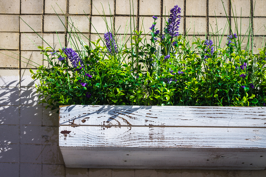 Quick and Easy Garden Wall Planters for Your Seattle Home - Greenwood Hardware