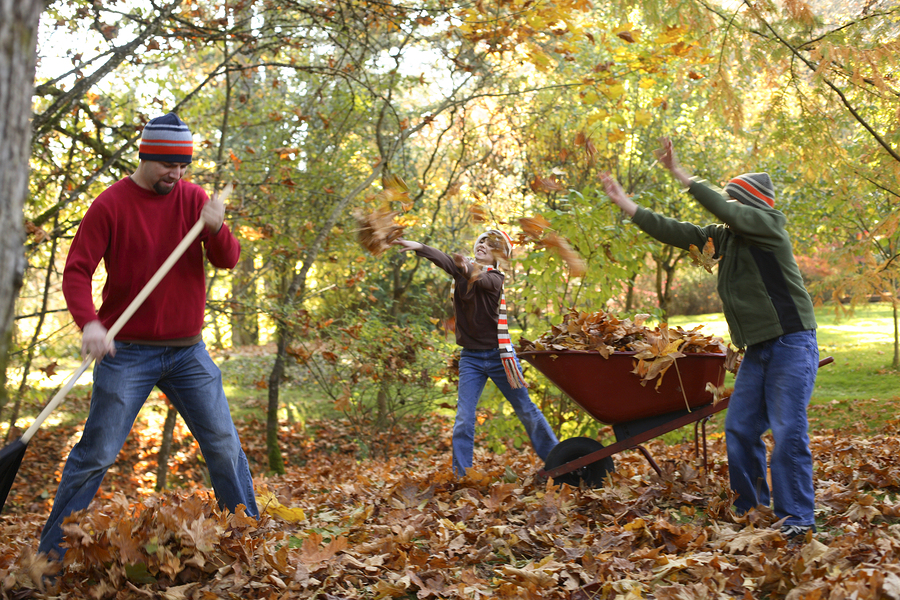 Preparing for Fall Cleanup in the Pacific Northwest - Greenwood Hardware