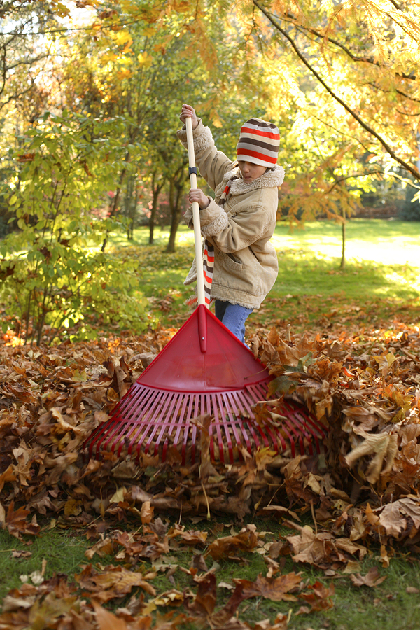 All About Leaf Cleanup for Your Pacific Northwest Lawn