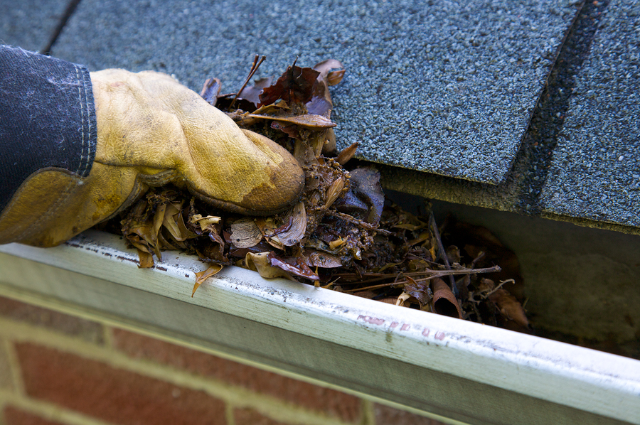 Gutter Cleaning and Care in the Pacific Northwest - Greenwood Hardware